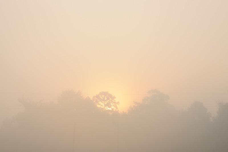 Sun breaking through the fog.