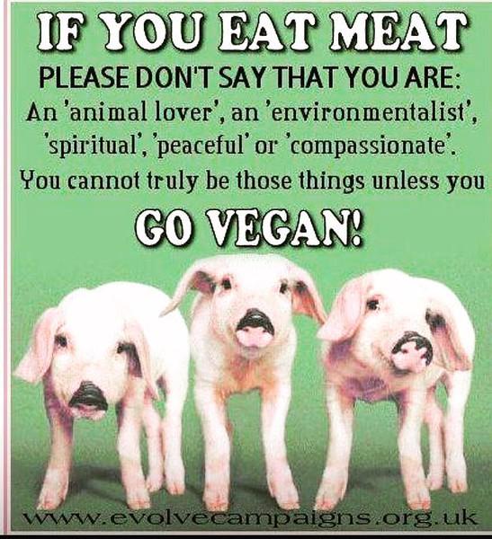 FreshGreenSmoothies_com-Vegans-Intelligent-Compassionate-raworganicvegan-4206.jpg