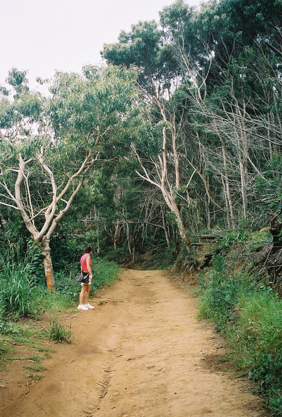Hawaii-585.jpg