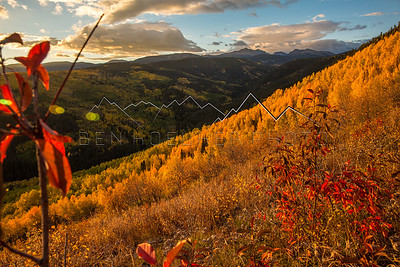 Fall Colors from Stag Gulch, CO