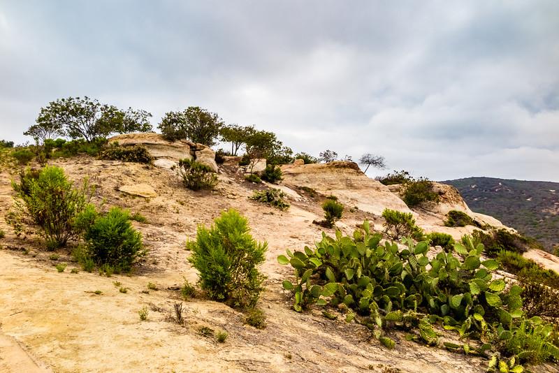 Moro Canyon, Orange County, California, United States