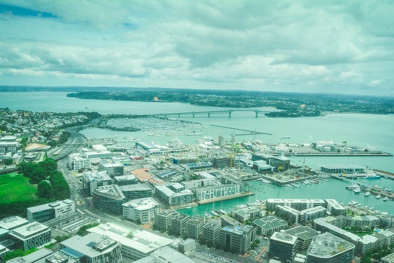 Auckland-13.jpg
