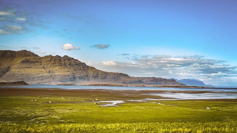 ReneFisher_EastCoastlineIceland.jpg