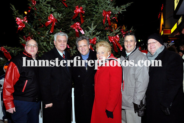 Bethpage Community Tree Lighting 12-07-08