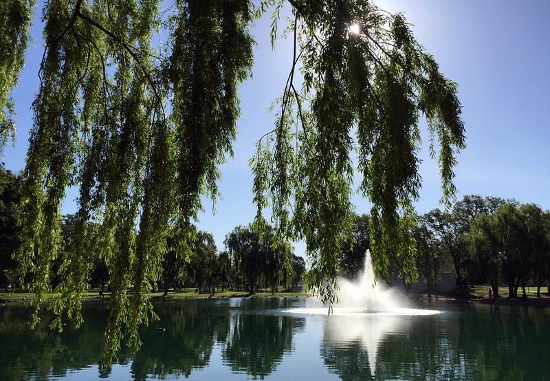 Park fountain.jpg