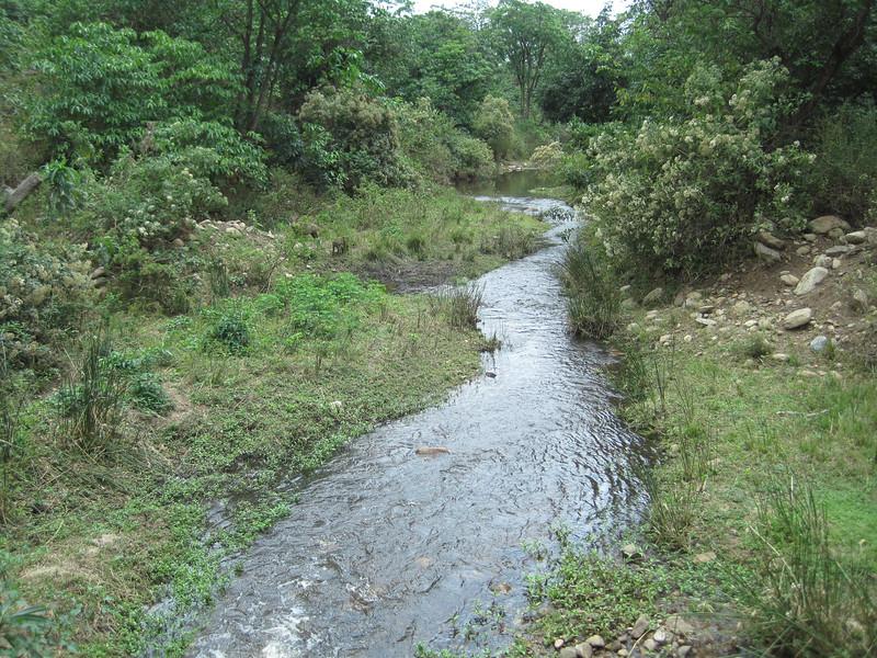 Tanzania14-3289.jpg