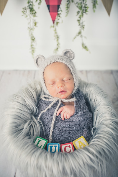 Rockford_newborn_Photography_L069.jpg