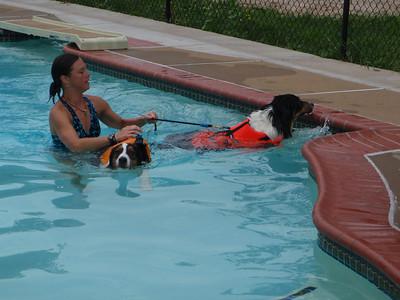 Puppies First Swim Lesson