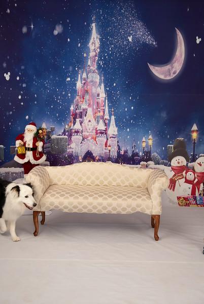 Christmas-2019-Large-131.JPG