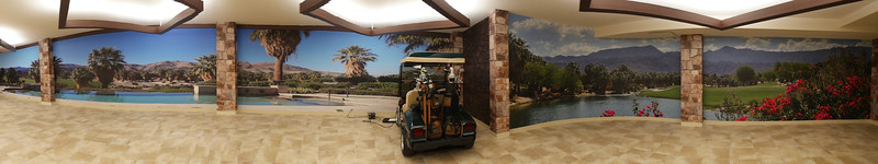 Panoramic-View-of-Recent-Garage-Wall-Murals.jpg