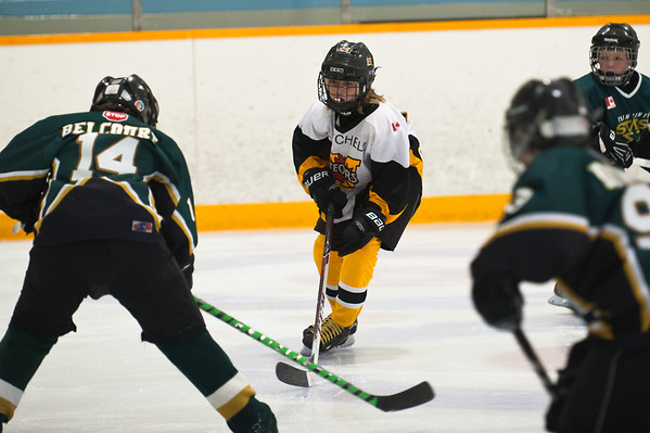 OMHA Twin Centre Series Game 1