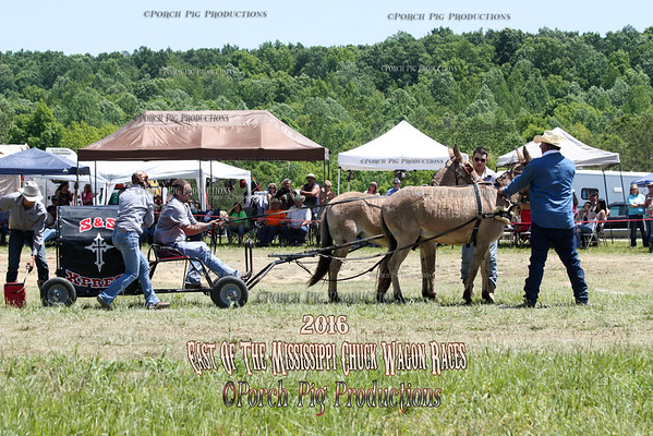 "2016 East of The Mississippi Chuckwagon Races,  Saturday 52"" Mules"