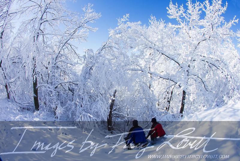 snow_3376 copy.jpg