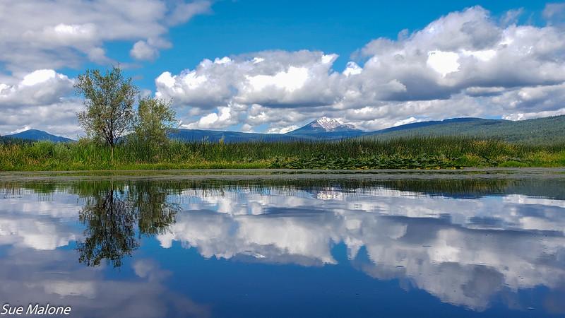 07-16-2019 Crystal Creek Kayak-19.jpg