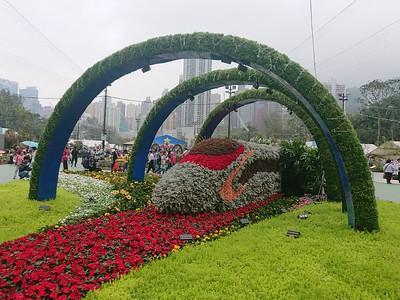 Flower Show 2019