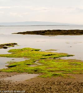 Beach at Troon, Scotland