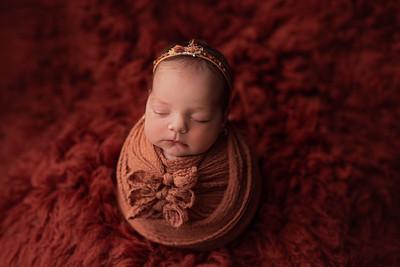 Sofia • Newborn