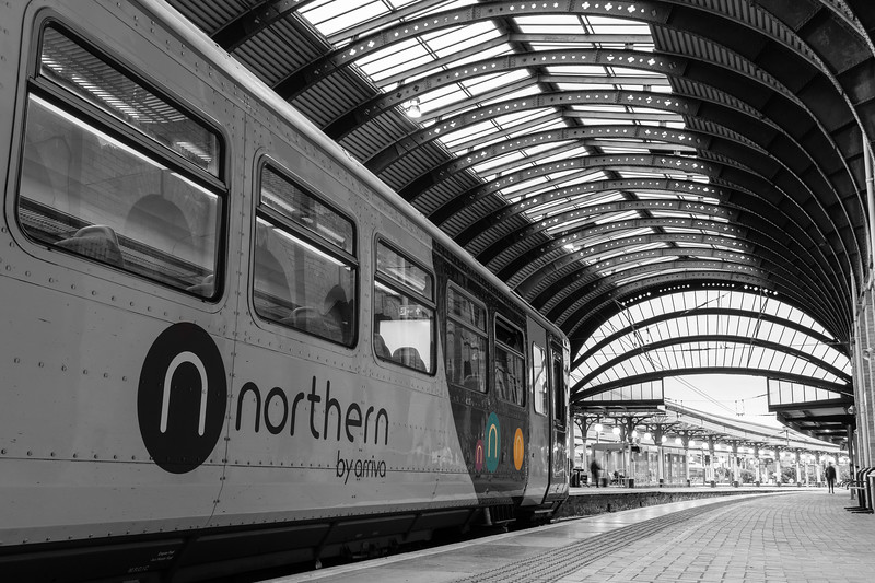 The Northern Circles - Colour Splash 155
