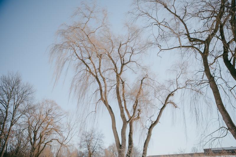AVS_EcoPreserve_Winter2021-35.jpg