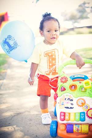 Dillon's 1st Birthday Party :: 10.02.16