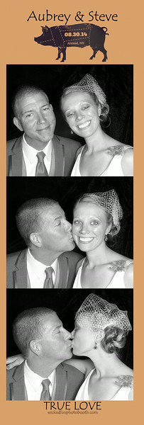 8-30-431 Private Residence-Photo Booth