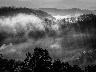 Tremont Tennessee Fall Brilliance Workshop 2017