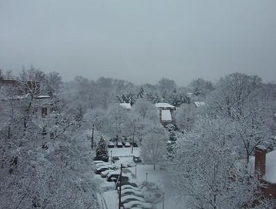 Snow in DC - Feb. 25, 2007