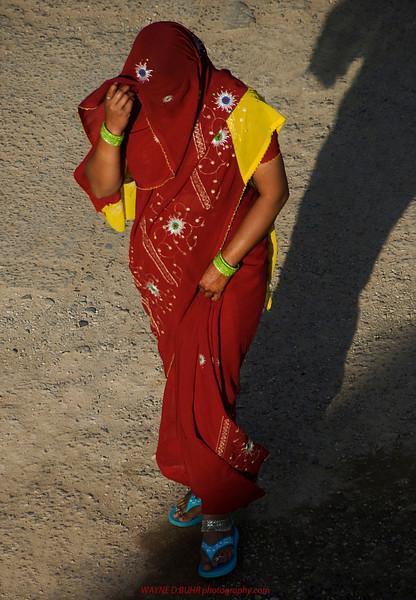 India2010-0204A-423.jpg