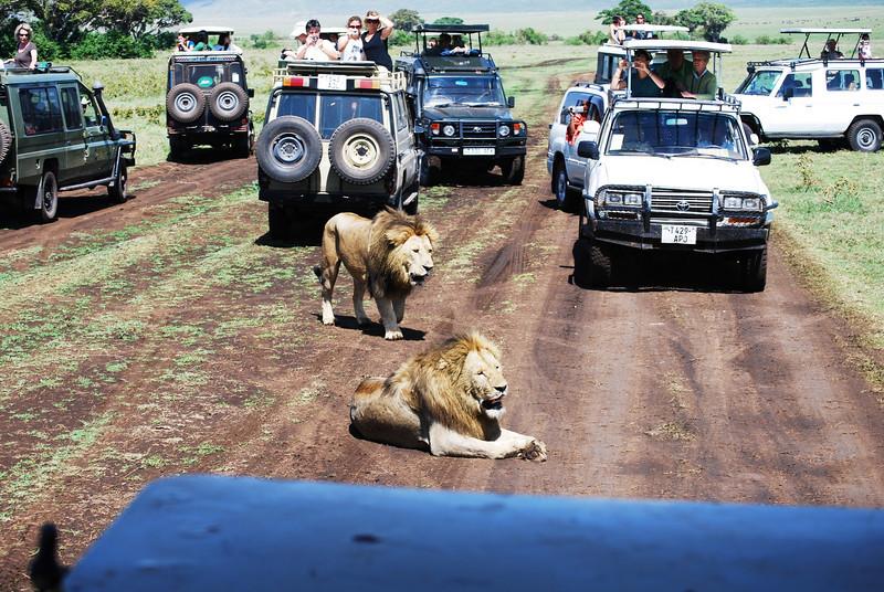 Ngorongoro (134).JPG