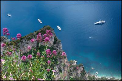 Capri Gallery