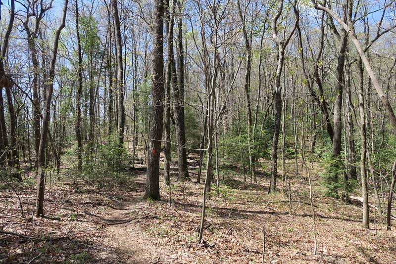 Ridge Trail - 2,940'