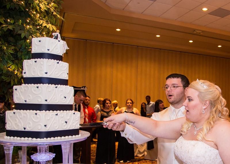 DeRoch_wedding_169.jpg