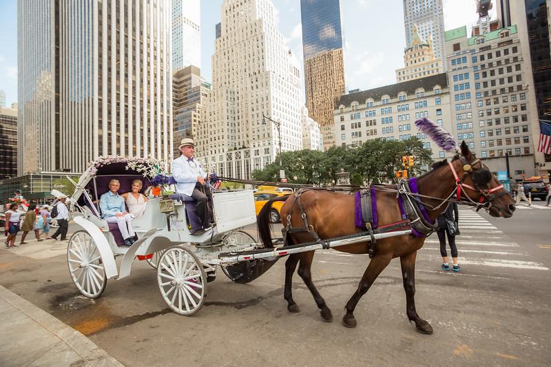 Central Park Wedding - Beth & Nancy-156.jpg