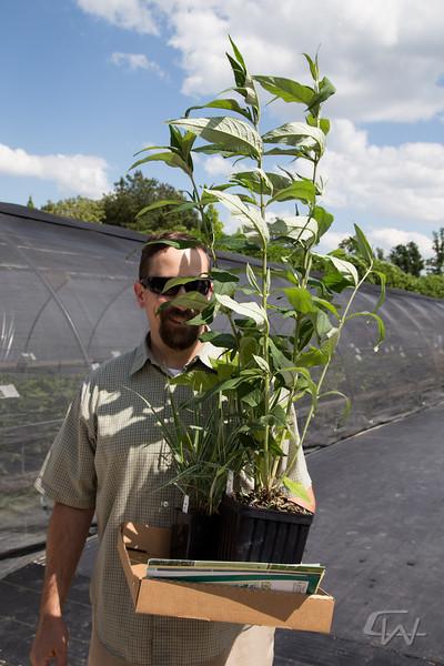 PlantDelightsSpring2013-2701.jpg