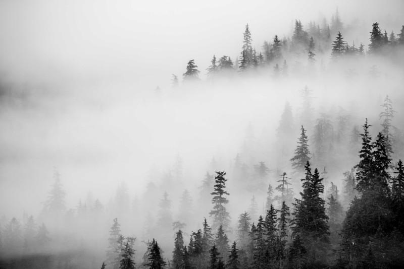 IMG_2779 © Brandon Harvey Photography_.jpg