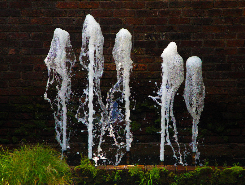 A Garden fountain (frozen at 1/8000th of a second.)