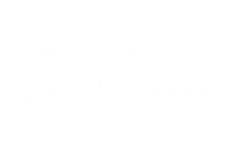 Paul-Simmonds-white-low-res.png