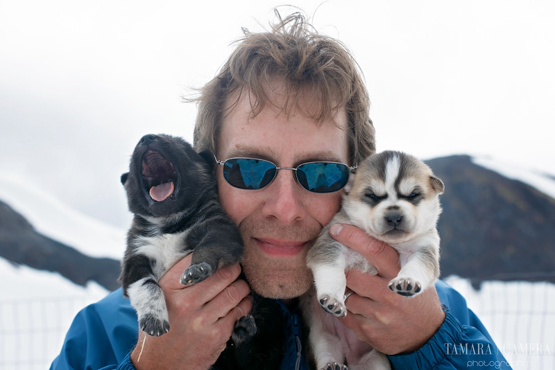 Puppies-5-2.jpg