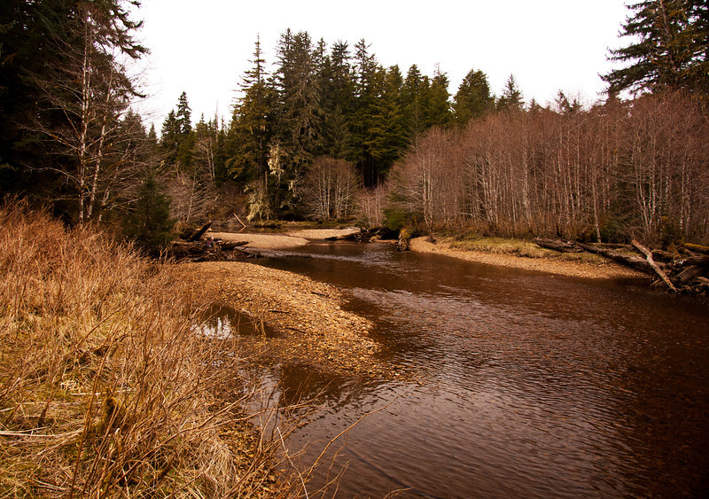 First Log Jam site, Kadake Creek, Kuiu Island, Alaska April 2013, Day #2