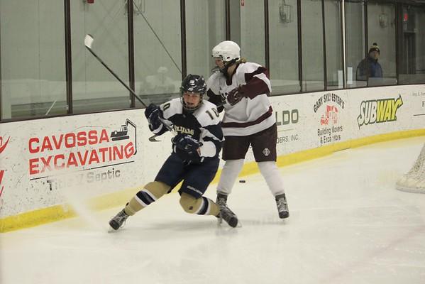 2015 Girls Ice Hockey