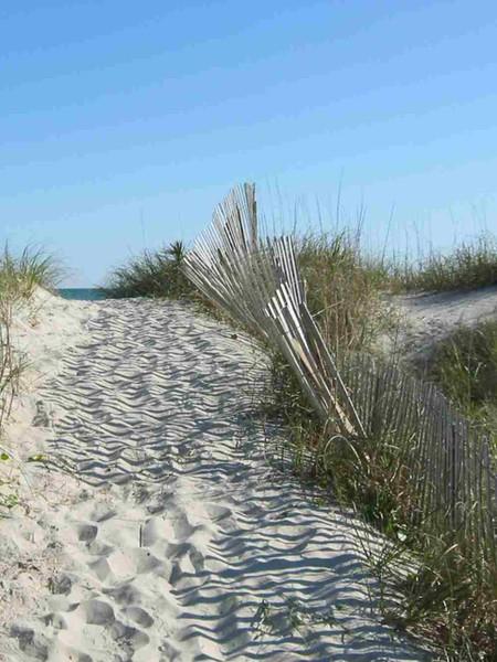 Beach Path.JPG