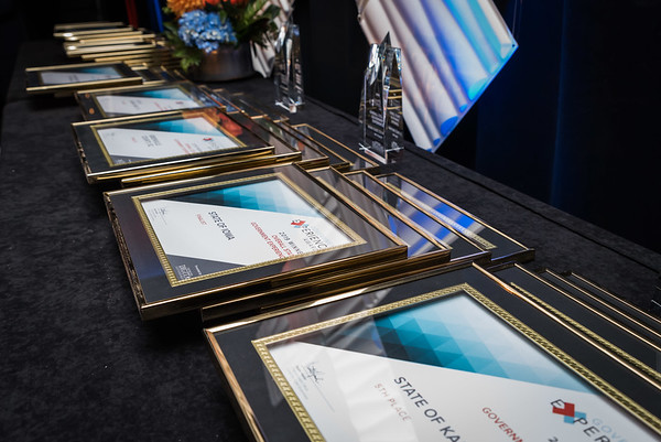 Government Experience Awards 2019