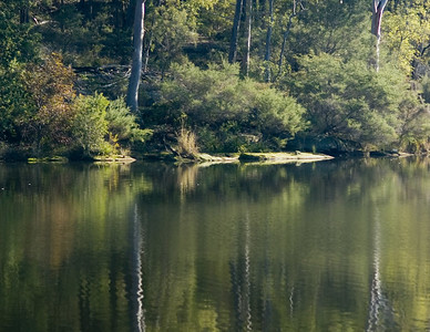 Lake Parammatta Reserve