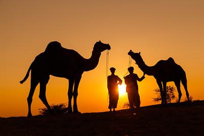 Rajasthan Recce Trip - Nov 2013