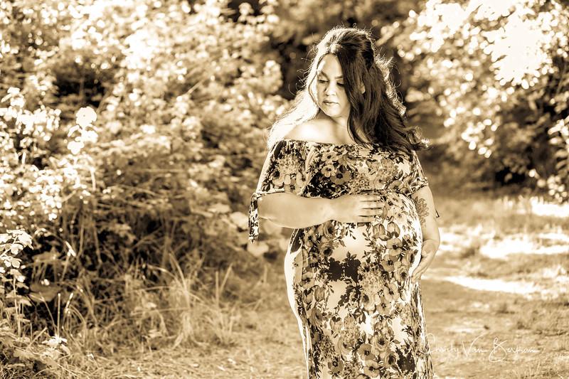 2020_May-Gonzalves-Maternity8058.jpg