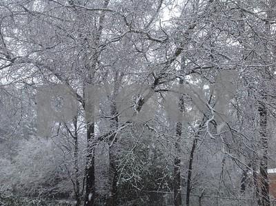 snow-photos