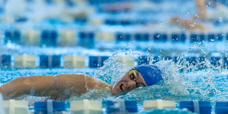 2018_KSMetz_Feb17_SHS Swimming_ State Finals_NIKON D5_5062.jpg