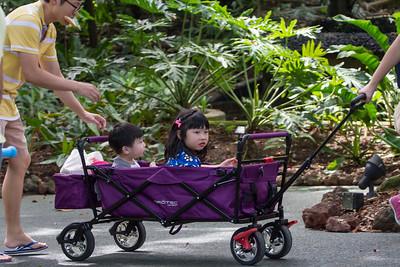 Botanic gardens. Singapore