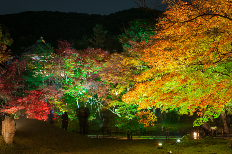Garyuchi Pond in Kodai-ji Temple
