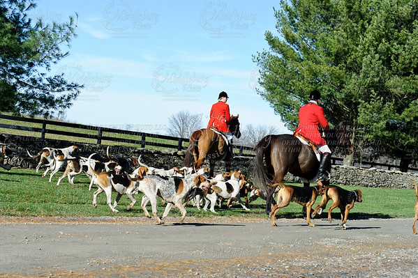 Snickersville Hounds  11-25-2011